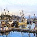 Fishing boats at the wharf