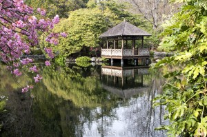 Japanese Garden - Royal Roads, Victoria